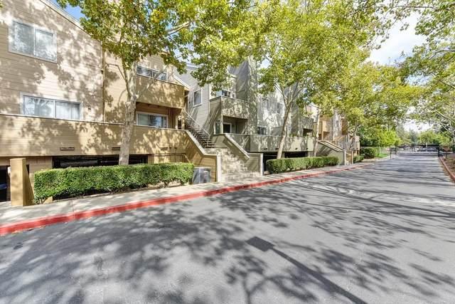 1019 Dornajo Way, Sacramento, CA 95825 (MLS #221128638) :: REMAX Executive