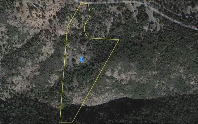 0 Slumbering Oaks Trail, Julian, CA 92036 (MLS #221128734) :: 3 Step Realty Group