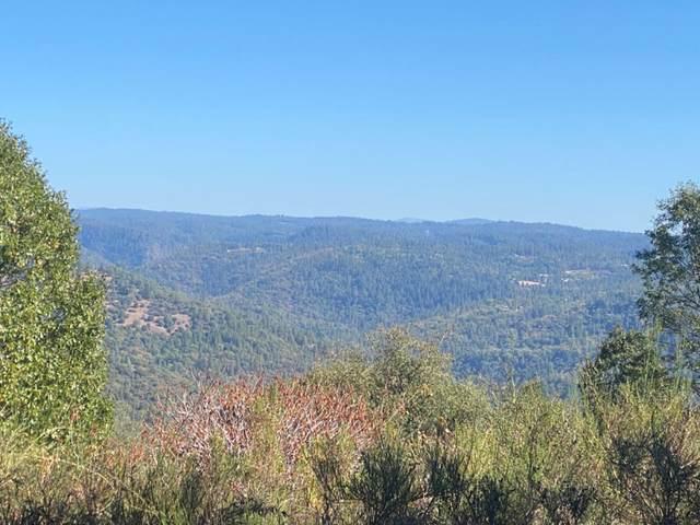 10 Light Canyon Rd, Placerville, CA 95667 (MLS #221128912) :: Deb Brittan Team