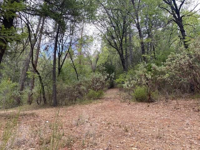2 Chapman Trail, Placerville, CA 95667 (MLS #221129154) :: Deb Brittan Team