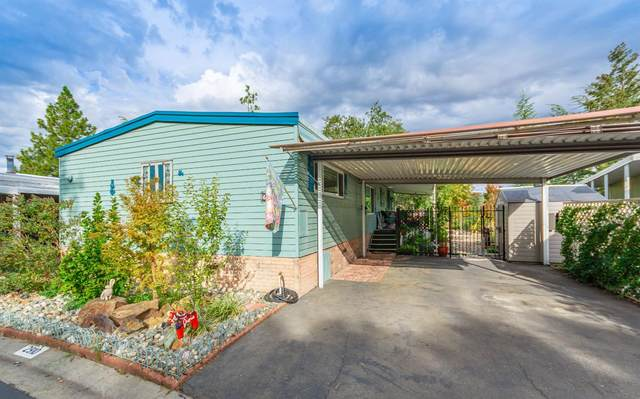 2910 Tree View Ln, Placerville, CA 95667 (MLS #221129890) :: Jimmy Castro Real Estate Group