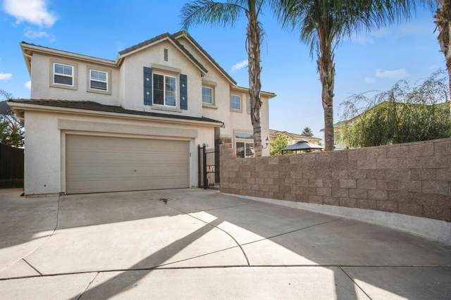 3528 Macadamia Lane, Ceres, CA 95307 (MLS #221130155) :: DC & Associates