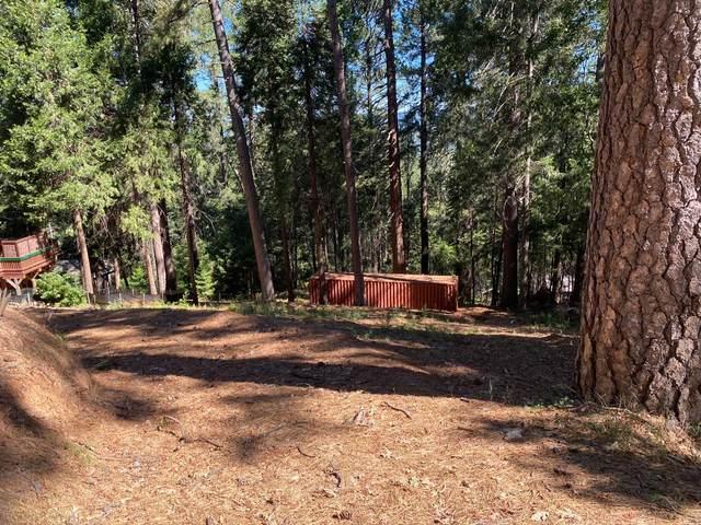 390 Alpine Drive, Colfax, CA 95713 (MLS #221130740) :: Jimmy Castro Real Estate Group