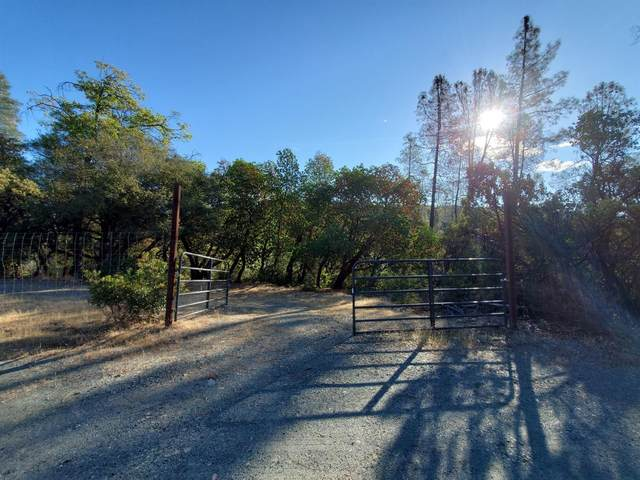 4084 Shoemaker Road, Georgetown, CA 95634 (MLS #221130983) :: Jimmy Castro Real Estate Group