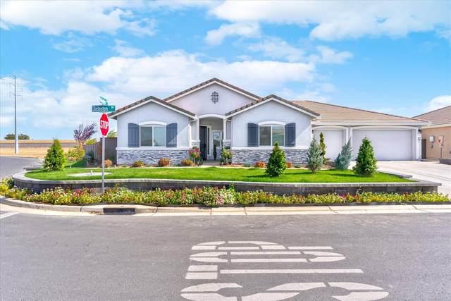 1019 Jadeston Way, Plumas Lake, CA 95961 (MLS #221131159) :: Keller Williams Realty