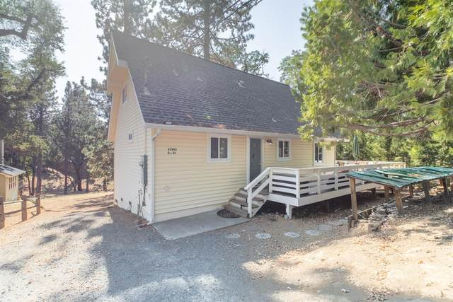 20230 Pine Mountain Drive, Groveland, CA 95321 (MLS #221132462) :: Keller Williams Realty