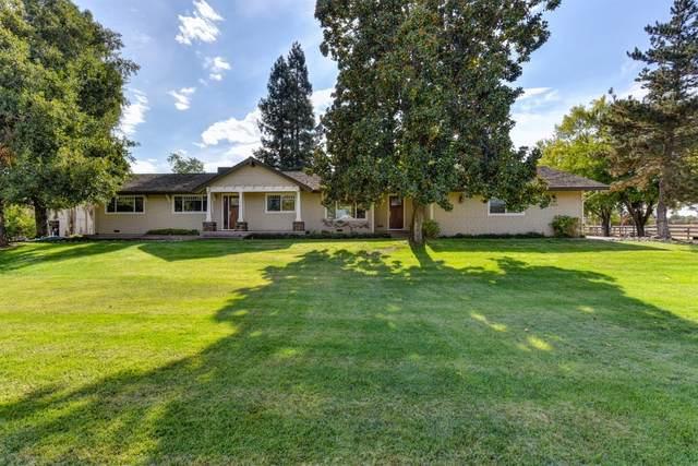 10214 Wrangler Drive, Elk Grove, CA 95624 (MLS #221132536) :: REMAX Executive