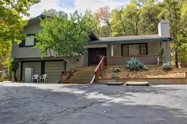 14011 Druid Lane, Pine Grove, CA 95665 (MLS #221132942) :: Keller Williams - The Rachel Adams Lee Group
