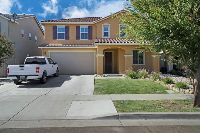 4029 Marchesotti Way, Stockton, CA 95204 (MLS #221133248) :: Keller Williams Realty