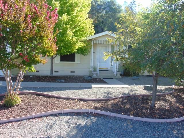 18515 Vista Drive, Jamestown, CA 95327 (MLS #221133575) :: Deb Brittan Team
