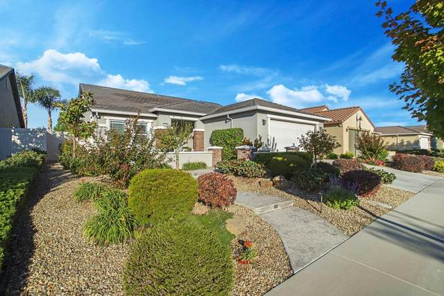 2689 Maple Grove Avenue, Manteca, CA 95336 (MLS #221134000) :: Live Play Real Estate | Sacramento