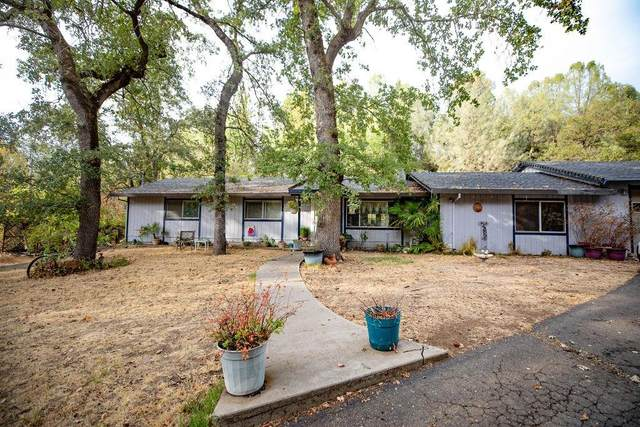 1887 Goldman Lane, Placerville, CA 95667 (MLS #221134222) :: Heidi Phong Real Estate Team