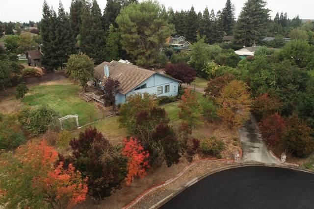 9905 Wild Oak Court, Oakdale, CA 95361 (MLS #221134310) :: Heather Barrios