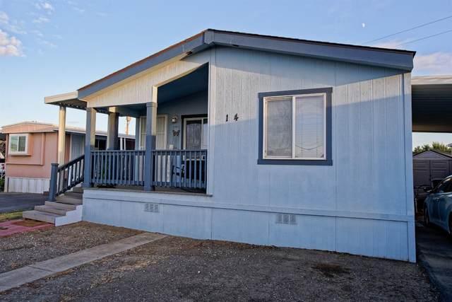 2151 E Pacheco Boulevard #14, Los Banos, CA 93635 (MLS #221134348) :: Live Play Real Estate   Sacramento
