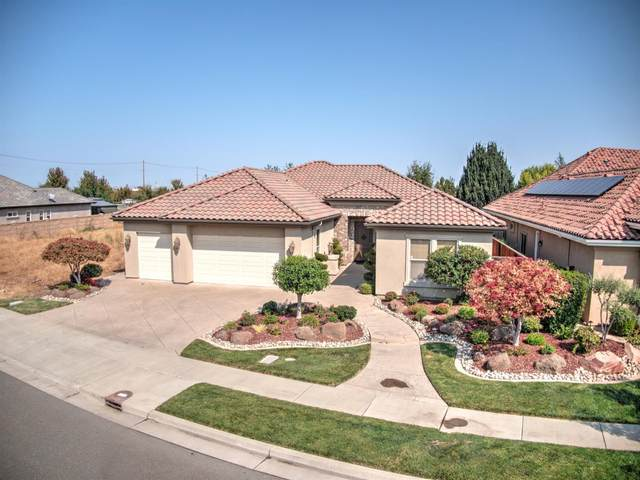 2431 Vintage Oaks Court, Lodi, CA 95242 (MLS #221134350) :: Live Play Real Estate | Sacramento