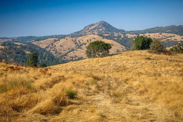 0 Old Toll Road, Mokelumne Hill, CA 95245 (MLS #221134414) :: 3 Step Realty Group