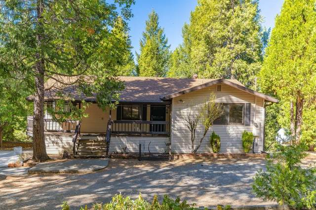 3730 Railroad Flat Road, Wilseyville, CA 95257 (MLS #221134468) :: Heidi Phong Real Estate Team