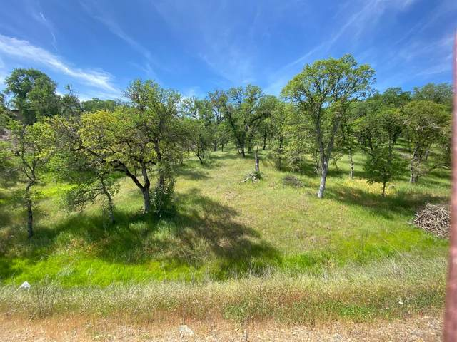 1307 Acorn Street, Copperopolis, CA 95228 (MLS #221134494) :: Jimmy Castro Real Estate Group