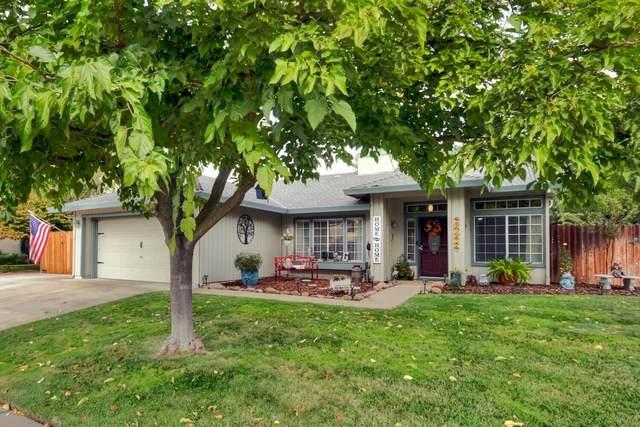 9569 Dapple Court, Elk Grove, CA 95624 (MLS #221134639) :: Heidi Phong Real Estate Team