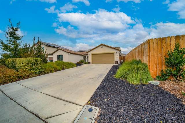 9963 Luther Road, Live Oak, CA 95953 (MLS #221134794) :: Live Play Real Estate | Sacramento
