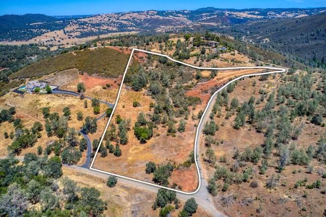 2005 Salmon Valley Lane, El Dorado Hills, CA 95762 (MLS #221135584) :: The Merlino Home Team