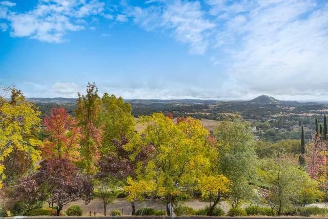 10299 Spunn Road, Jackson, CA 95642 (MLS #221135945) :: Keller Williams - The Rachel Adams Lee Group