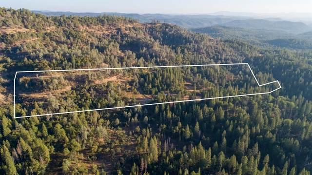 15354 Armstrong Road, Sheep Ranch, CA 95246 (MLS #221136882) :: Keller Williams - The Rachel Adams Lee Group