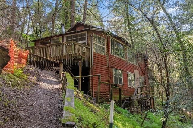 350 Montezuma Avenue, Forest Knolls, CA 94933 (#321016848) :: Rapisarda Real Estate