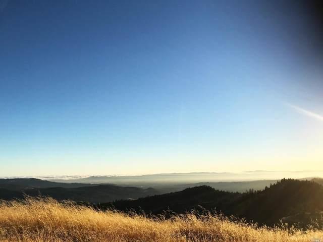 7777 Cougar Lane, Santa Rosa, CA 95409 (MLS #321020979) :: eXp Realty of California Inc