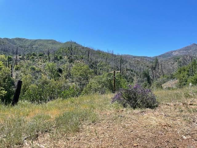 11050 Van Dorn Reservoir Road, Middletown, CA 95461 (MLS #321043454) :: Heather Barrios