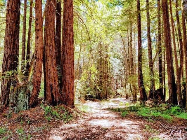 22078 Ruoff Road, Jenner, CA 95450 (MLS #321050658) :: Keller Williams - The Rachel Adams Lee Group