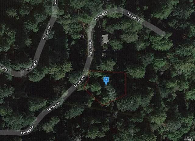11480 Terrace Drive, Forestville, CA 95436 (MLS #321051169) :: Deb Brittan Team