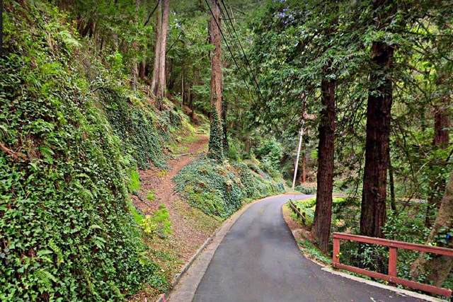 226 Rose Avenue, Mill Valley, CA 94941 (MLS #321056082) :: REMAX Executive