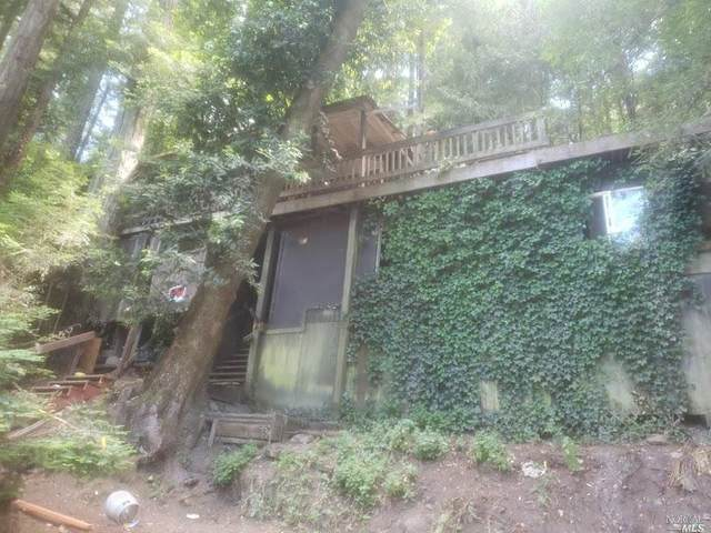Guerneville, CA 95446 :: 3 Step Realty Group