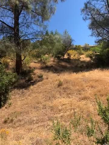 9720 Sequoia Road, Kelseyville, CA 95451 (MLS #321060557) :: Heidi Phong Real Estate Team
