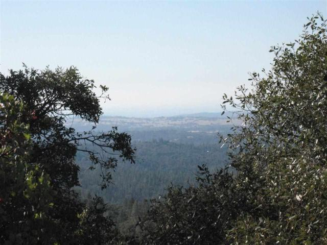 20140 Neilson Road, Pine Grove, CA 95665 (MLS #14600048) :: NewVision Realty Group