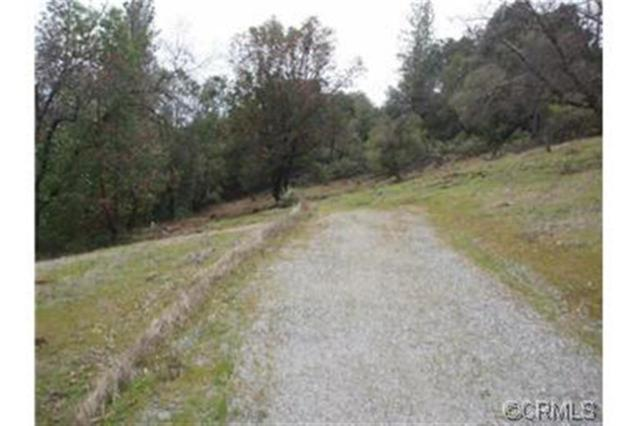 0-Lot 1 Christina Pines Court, Jackson, CA 95642 (MLS #14600510) :: Team Ostrode Properties