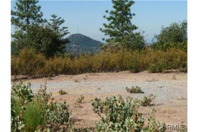 0-0 W Clinton Road, Jackson, CA 95642 (MLS #14600511) :: Team Ostrode Properties