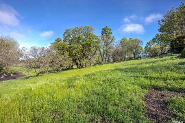 15333 De La Cruz, Rancho Murieta, CA 95683 (MLS #16046840) :: The Merlino Home Team