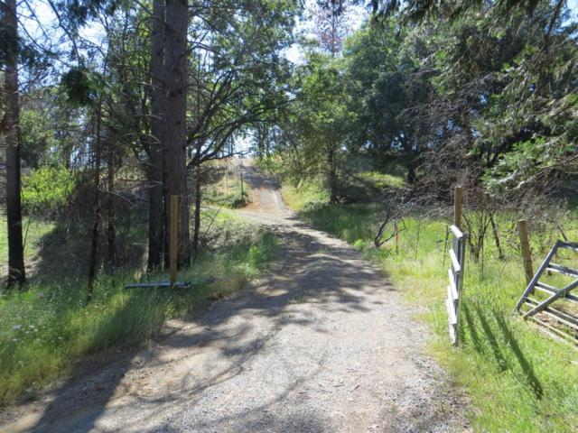 716 Blossom Lane, Mokelumne Hill, CA 95255 (MLS #17040032) :: Dominic Brandon and Team