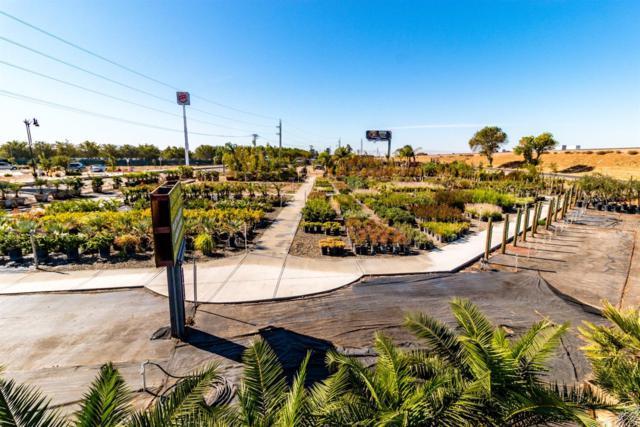 66 E Lathrop Rd Road, Lathrop, CA 95330 (MLS #17062360) :: REMAX Executive