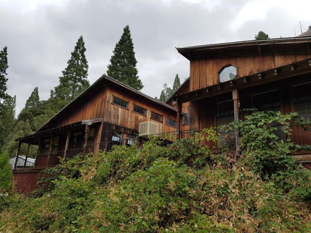 420 Goodyears Creek Road, Downieville, CA 95936 (MLS #17068250) :: Keller Williams - Rachel Adams Group