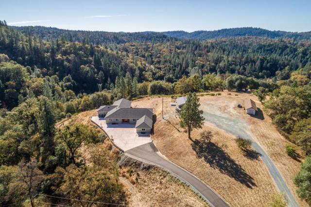 5261 Hollow Lane, Greenwood, CA 95635 (MLS #17071334) :: Keller Williams Realty