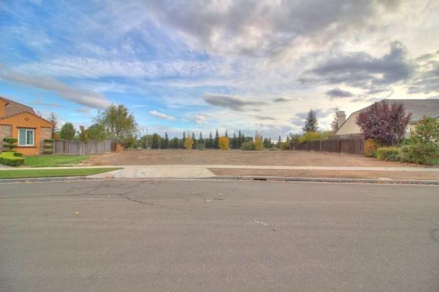 1238 Callaway Circle, Ripon, CA 95366 (MLS #17071751) :: The Del Real Group