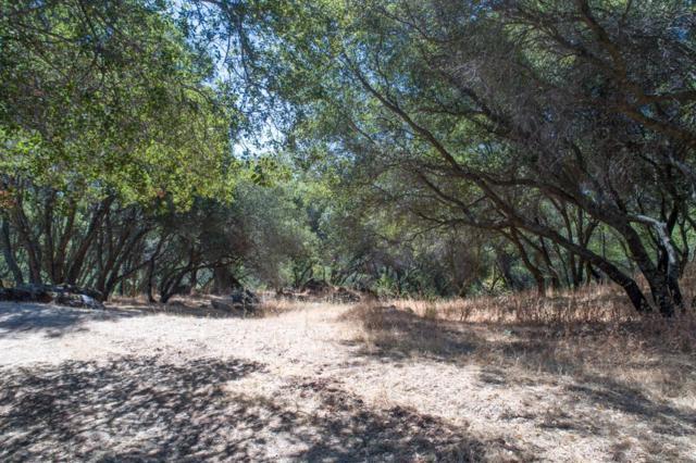 9270 Hummingbird Lane, Granite Bay, CA 95746 (MLS #17073410) :: Keller Williams - Rachel Adams Group