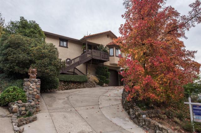 3819 N Lakeshore Boulevard, Loomis, CA 95650 (MLS #17074021) :: Keller Williams Realty