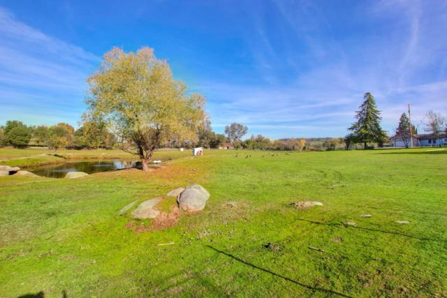 4651 Val Verde Road, Loomis, CA 95650 (MLS #17077279) :: Keller Williams - Rachel Adams Group