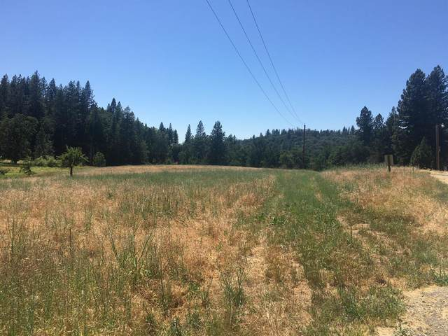 0-0 Highway 88, Pioneer, CA 95666 (MLS #17600011) :: The MacDonald Group at PMZ Real Estate