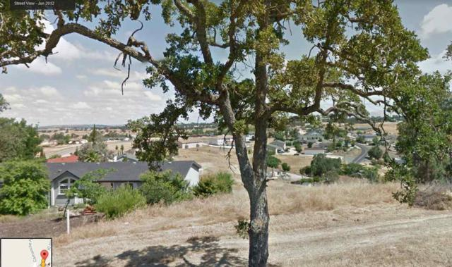4135 Quail Hill Court, Ione, CA 95640 (MLS #17600791) :: NewVision Realty Group