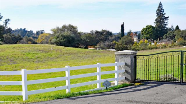 9930 Green Hill- Lot #4 Court, Newcastle, CA 95658 (MLS #18002942) :: Dominic Brandon and Team